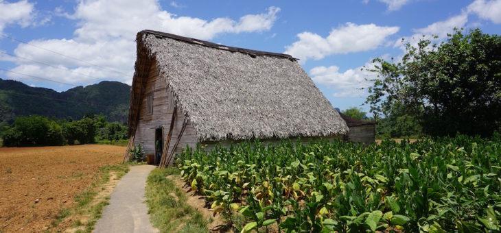 12 top attractions in Vinales