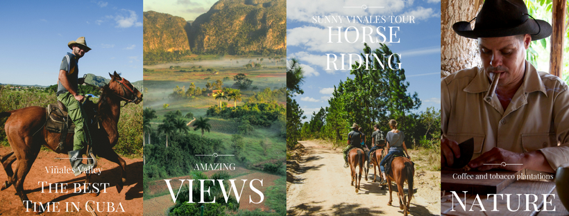 Sunny Vinales Tour from Havana
